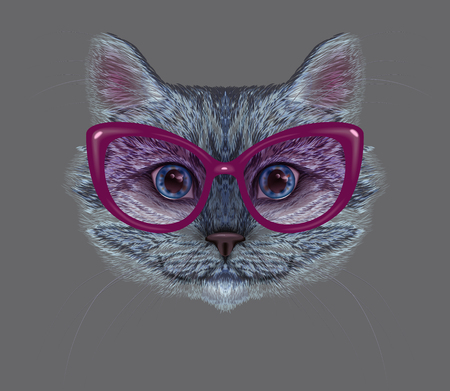 cat's eye glasses: Vector illustration of fashion cat portrait