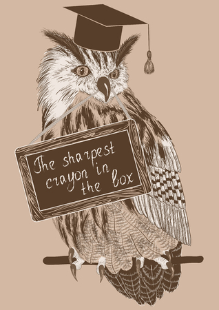 buho graduacion: Vector sketch of clever owl on a branch with message board