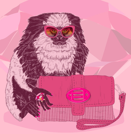 glamorous: Glamorous fashion marmoset in stylish glasses with pink satchel Illustration
