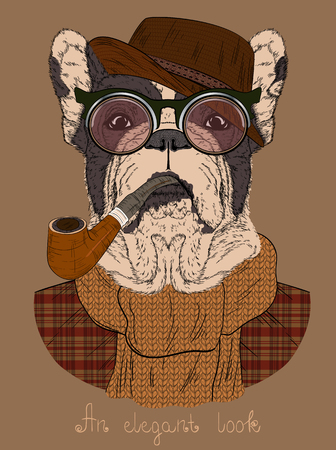 Fashion Illustration of dressed up  French bulldog with Tobacco Tube and glasses