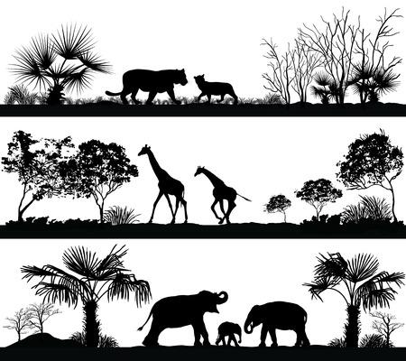 Vector set di illustrazione con animali selvatici