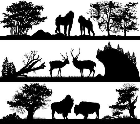 habitats: set of illustration with wild animals monkey, deer, musk ox in different habitats Illustration