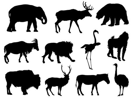 reeks dierlijke silhouetten