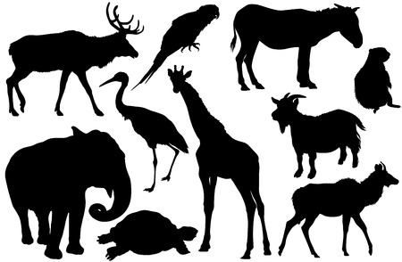 animal silhouette: set of animal silhouettes Elk, deer, Parrot, cockatoo, horse, pony, Jerboa, ground squirrel, elephant, Heron, giraffe, goat, turtle, Antelope Illustration