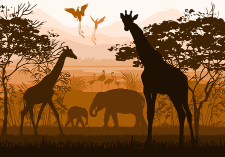 Beauty of nature with wild animals giraffe, elephant, flamingo, paradisial bird Ilustracja