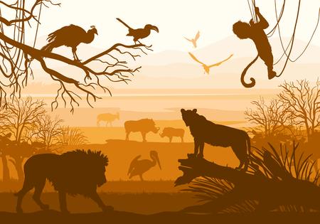 Beauty of nature with wild animals lion, wild boar, goat, cormorant, monkey, bird, peacock,
