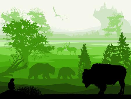 buey: Belleza de la naturaleza con los animales salvajes Buey almizclero, oso, Gopher, venados, aves Vectores