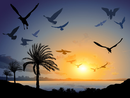 tropical beach panoramic: illustration of Tropical sea landscape with flock of flying bird Illustration