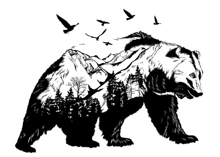 Hand drawn bear for your design, wildlife concept Vettoriali