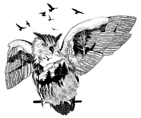 손으로 그린 올빼미 디자인, 야생 동물 개념에 대 한