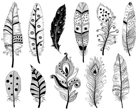 swelled: Hand Drawn Doodles illustration of Ethnic feathers Illustration