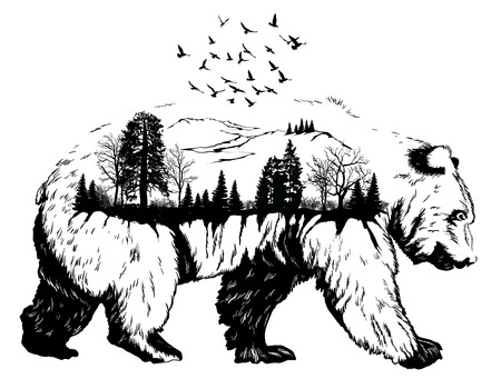 Double exposure, Hand drawn bear for your design, wildlife concept
