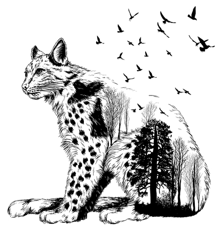 Double exposure, lynx for your design, wildlife concept Illustration