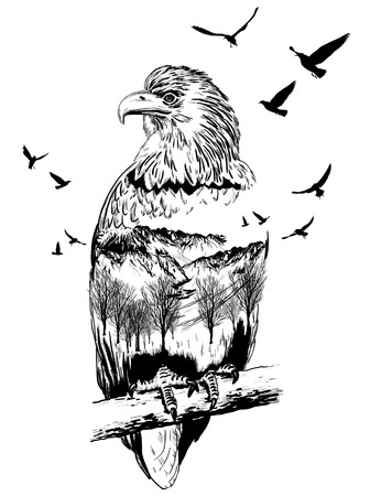 Double exposure, eagle for your design, wildlife concept
