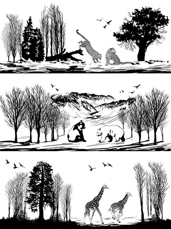 別の生息地で野生動物 (クマ、キリン、ヒョウ) と図のセット  イラスト・ベクター素材