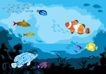 Ocean underwater world with tropical animals, vector illustration Illustration