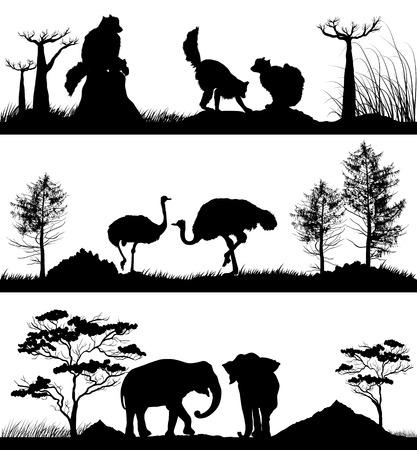 wild animals Ring-tailed lemur, elephant, ostrich