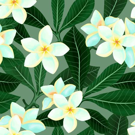 Seamless pattern with Frangipani Plumeria flowers Illustration