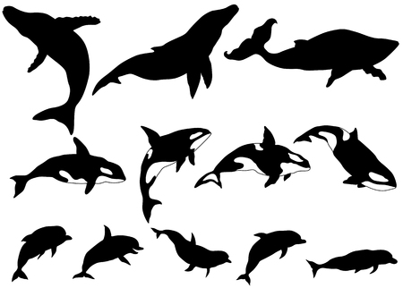 Set of whale, killer whale, dolphin Silhouettes
