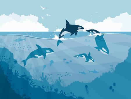 Silhouettes of Underwater wildlife, killer whales