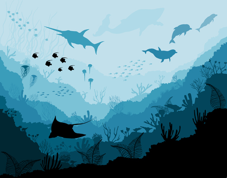 Underwater wildlife, Scat, shark, dolphins Stock Photo