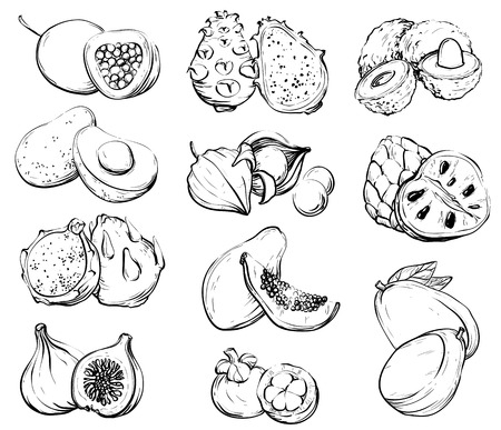 Hand drawn fruit, Healthy food isolated on light background. Banque d'images - 100032042