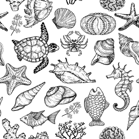Seamless pattern with sketch of sea shells, fish, corals and turtle. Ocean life 向量圖像