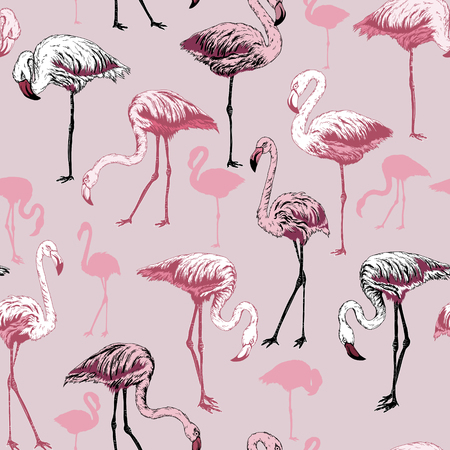 Seamless pattern with flamingo birds, vector Illustration