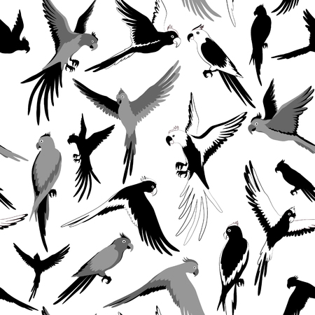 Vector Seamless pattern with parrot of jungle. Black and white Illustration