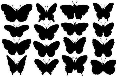 Set of sixteen various forms of butterflies silhouettes. Vector illustration