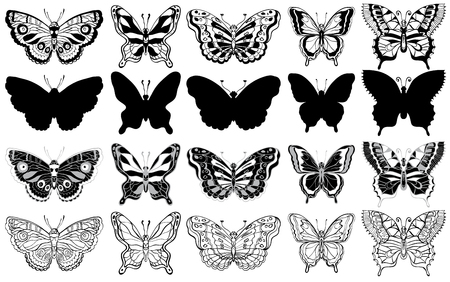 Set of butterflies. Silhouette, sketch and graphic icons. Vector illustration. Black and white