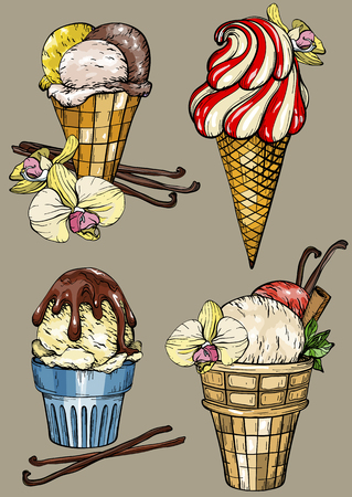 Set of ice cream with vanilla pods and flower. Colorful vector illustration Illustration