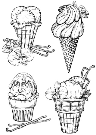 Collection of ice cream with vanilla pods and flower. Black and white sketch of vanilla ice cream. Vector illustration