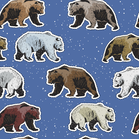 Seamless pattern with polar and brown bears bears. Vector illustration Illustration