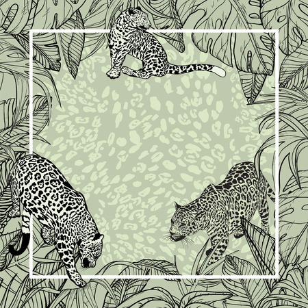 Big wild cats Banner Background with Tropical leaves and wild leopard, vector Illustration Illusztráció