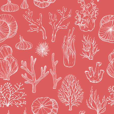 Seamless pattern with hand drawn corals, vector illustration
