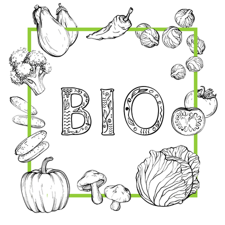 Bio Background with hand-drawn vegetables, black and white, vector illustration in vintage style