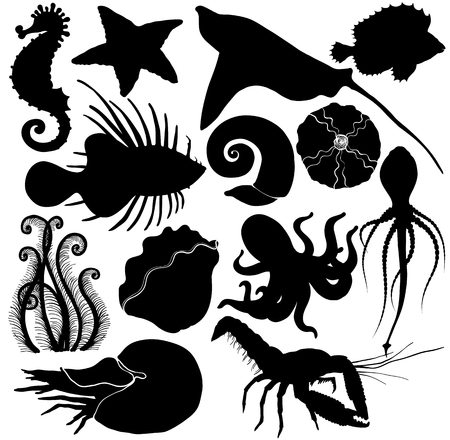 Silhouette Set with marine life organisms.