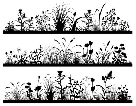 Silhouette of Field flowers and grass landscape set