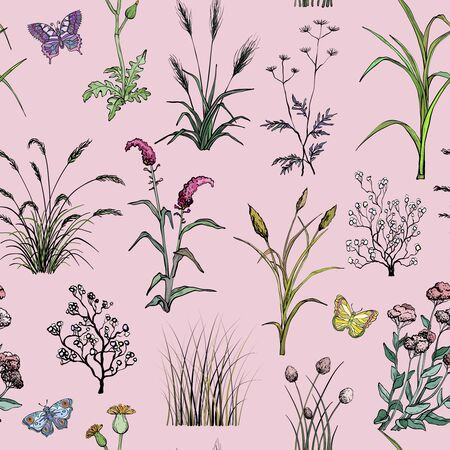Seamless pattern with Hand drawn Field flowers and grass