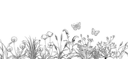 Black and white sketch, Field flowers and grass landscape Ilustracja