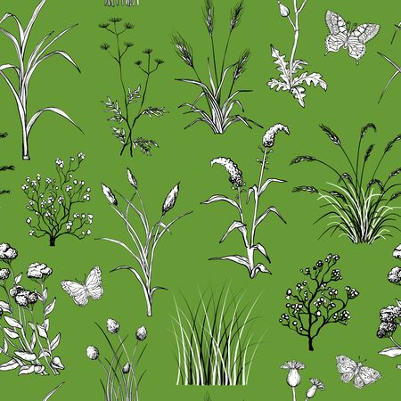 Seamless pattern with Hand drawn Field herbs and flowers