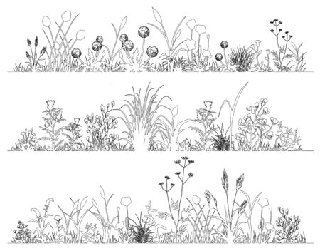 Field flowers and herbs landscape set, line art