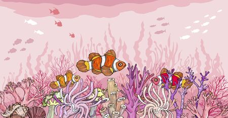 Hand drawn Clown fish in sea anemones coral reef, oceanic animal. Vector illustration. Vectores