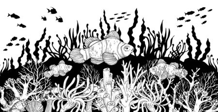 Hand drawn Clown fish in sea anemones coral reef, oceanic animal. Black and white. Vector illustration.
