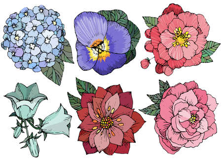 Beautiful floral set, various flowers.