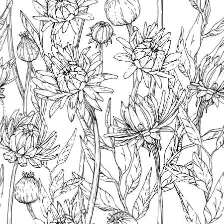 Seamless pattern with hand drawn gerbera flowers and brunchs