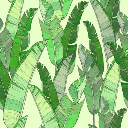 Seamless pattern with palm banana leaf and plants. Floral background jungle.