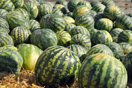 A pile of watermelons