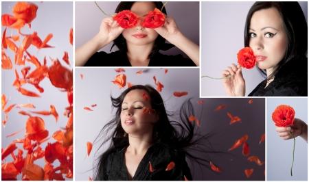 Poppies  collage photo